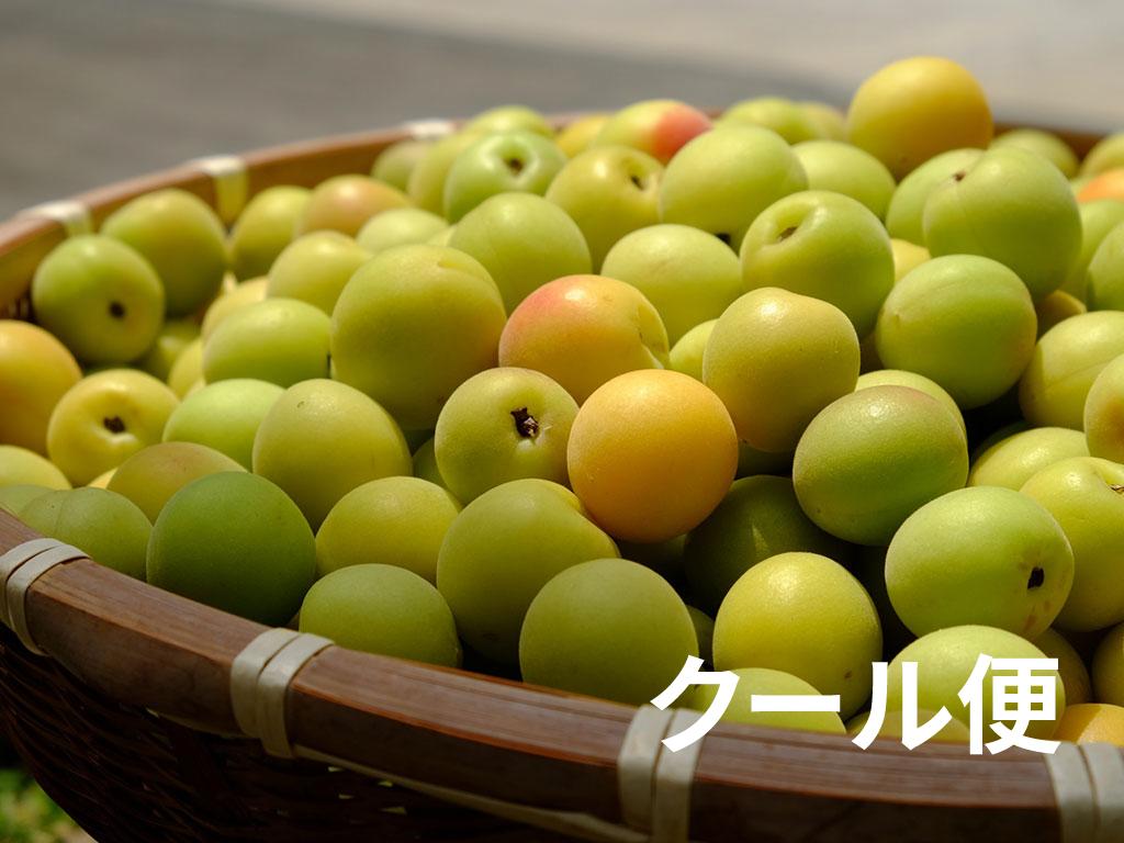kanjyuku3l3-cool